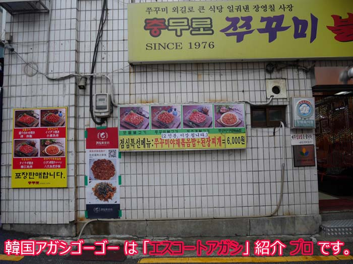 韓国アガシとチュクミプルコギ
