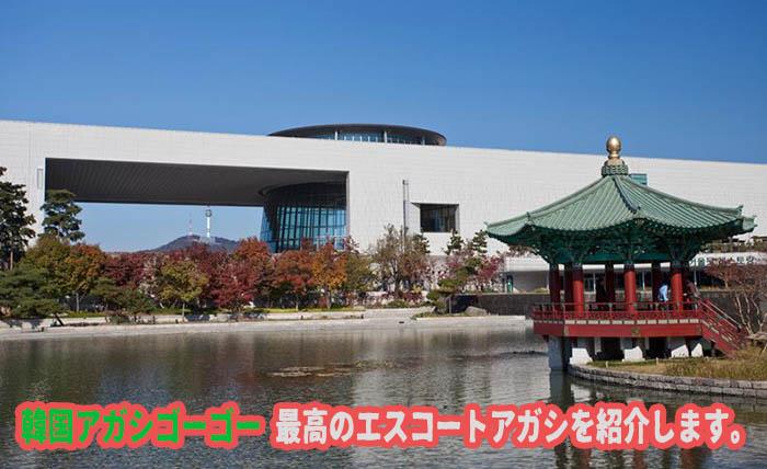エスコートアガシ デートスポット 国立中央博物館
