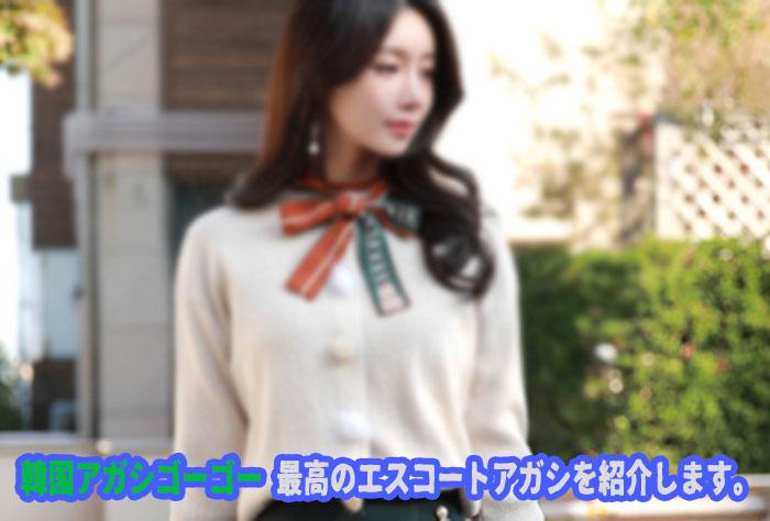 エスコートアガシ 韓国アガシ は日本語が話せます